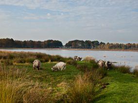 3e lente excursie 2019 Jilt Dijksheide bij Trimunt