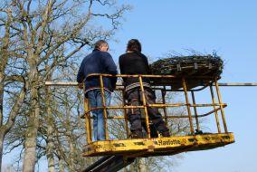 Nieuw ooievaarsnest geplaatst in Bakkeveen